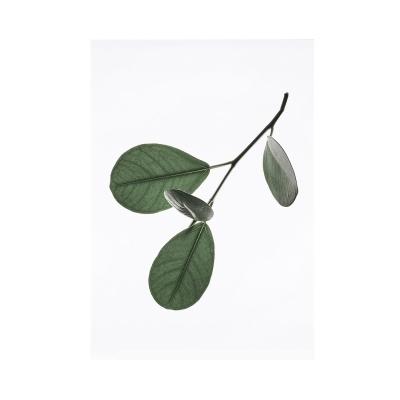 Bilde av Floating Leaves 05 plakat A4