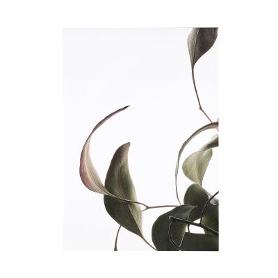 Bilde av Floating Leaves 08 plakat A5