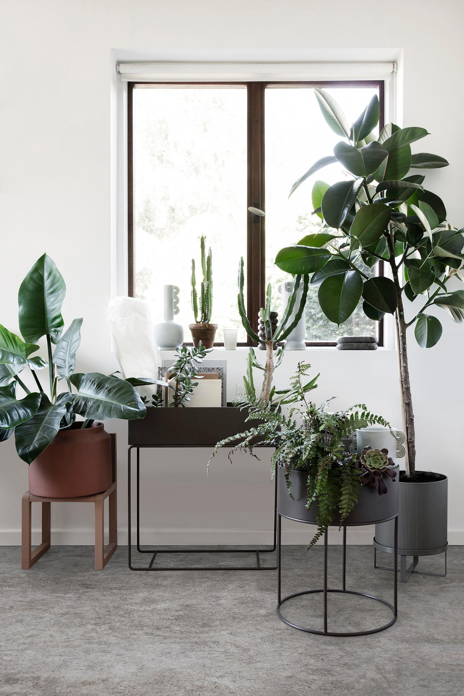 Topnotch Plant Box, Rose - Ferm Living @ Rum21.no BC-98
